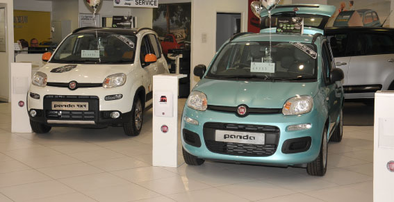 Welcome Video from Fiat Derby