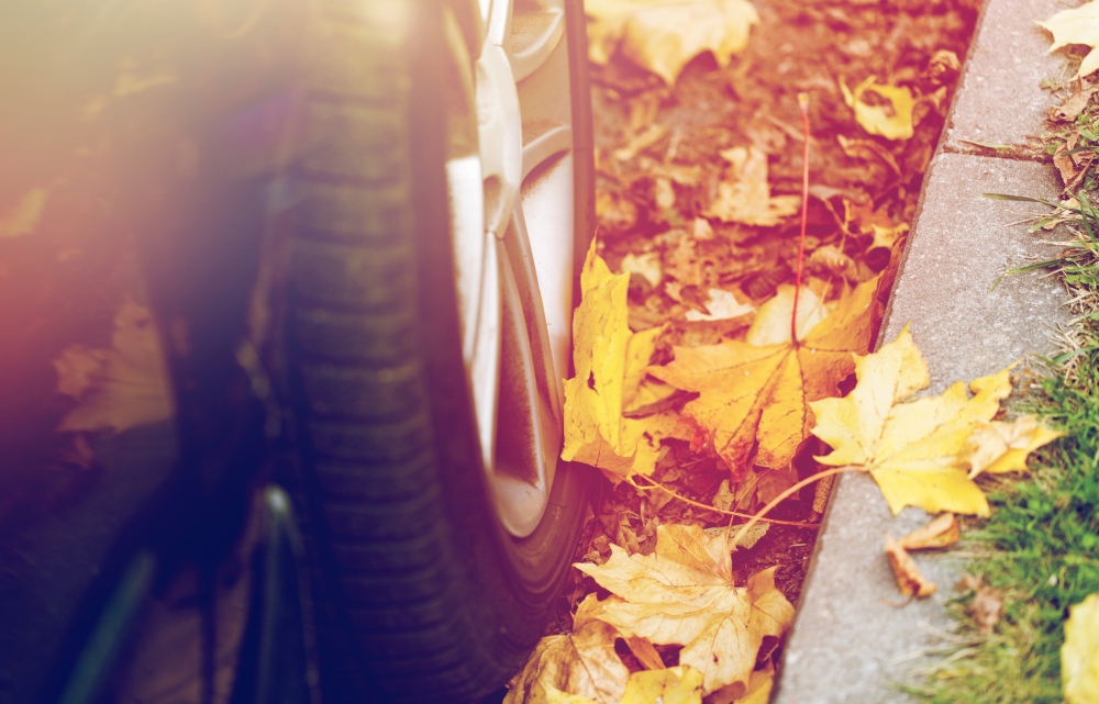 Autumn Driving Tips