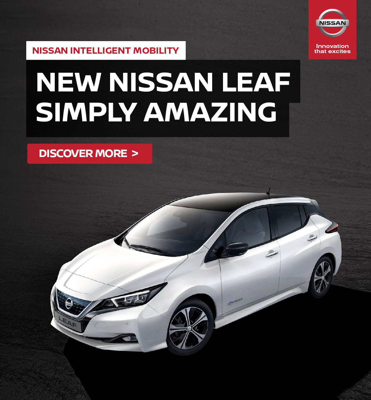 Nissan Leaf Simply Amazing