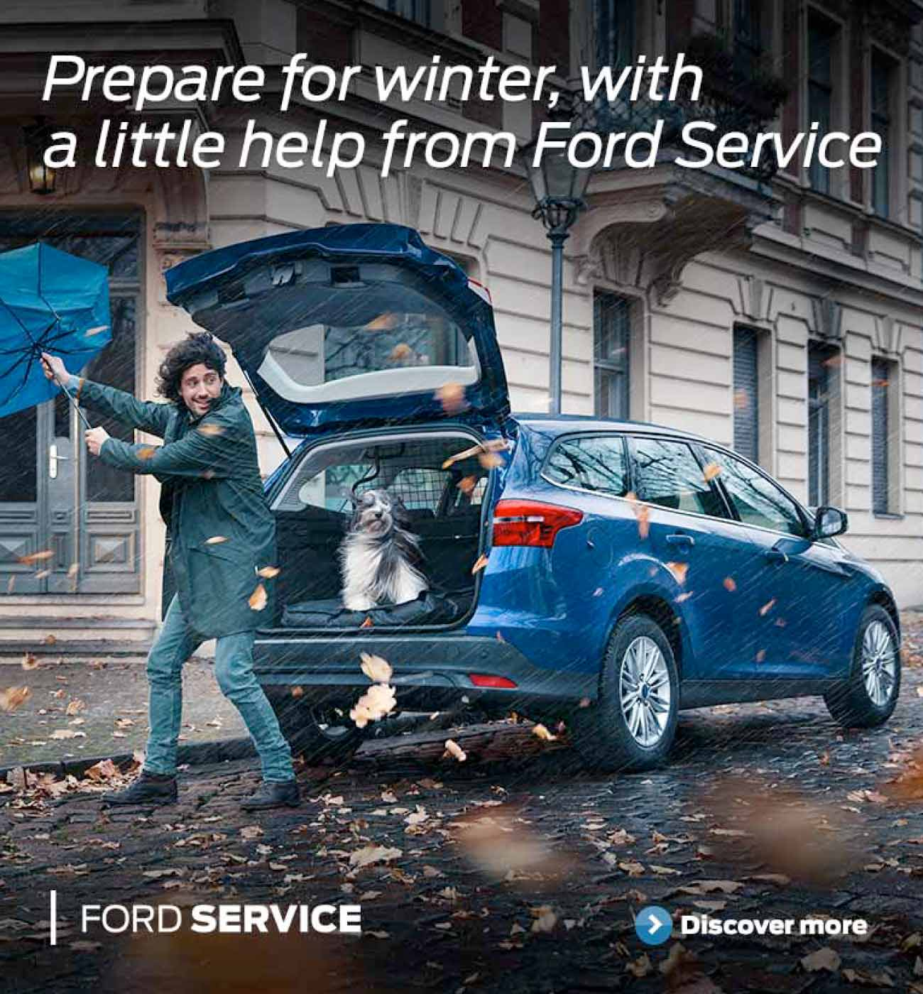 Ford Autumn Service Banner BB