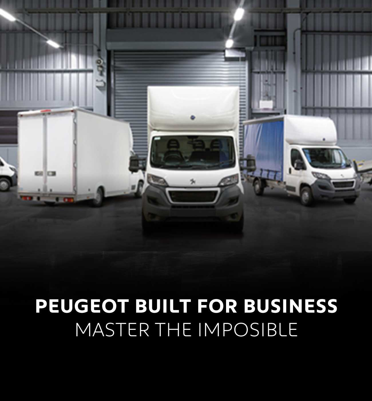 Peugeot buil for Business BB