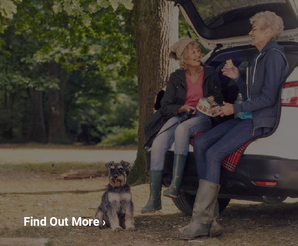 Find Out More About Motability