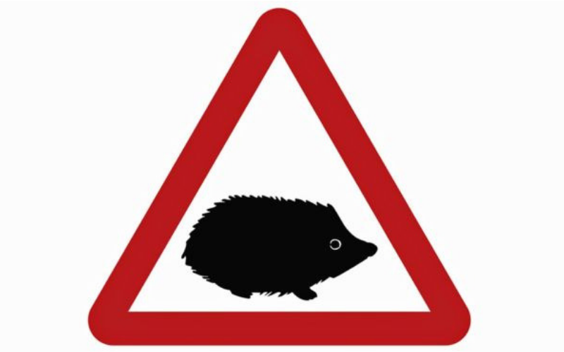 New Road Signs Implemented to Protect UK Wildlife