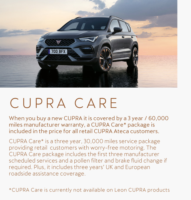 Cupra Care Tile 201120